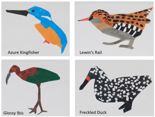 Alphabet Bird Project