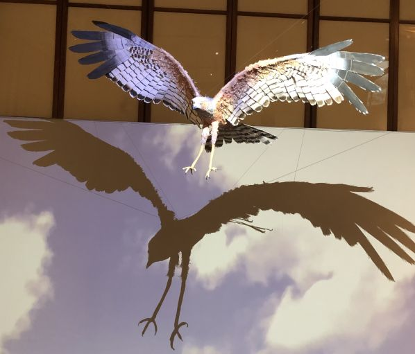 now you see us Art project - Spotted Harrier, Artist,; Mary-Jane Walker