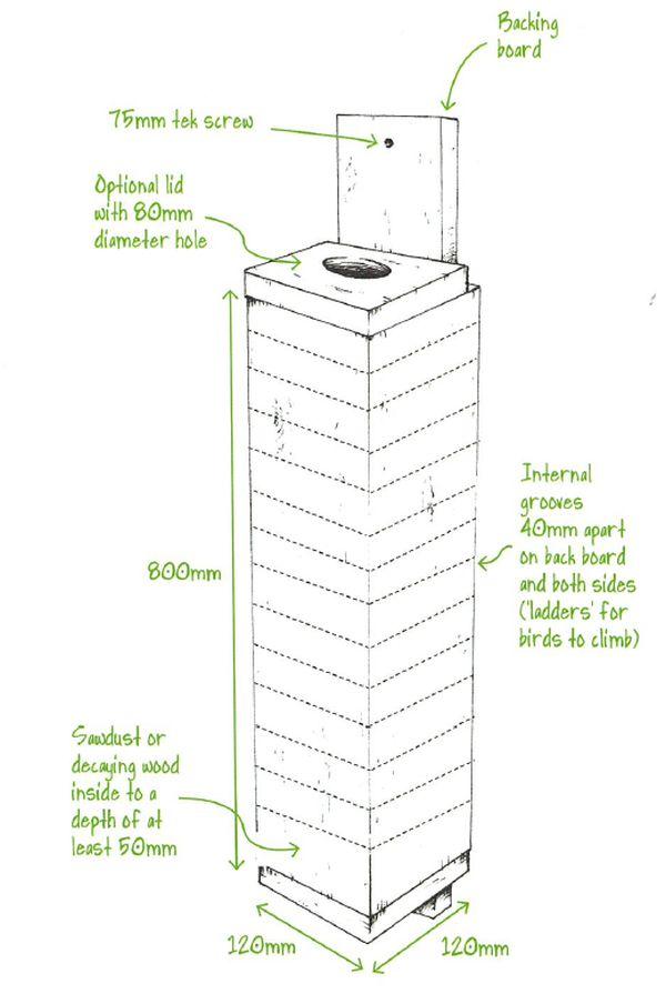 Turquoise Parrot nest box plan. Source: GBCMA