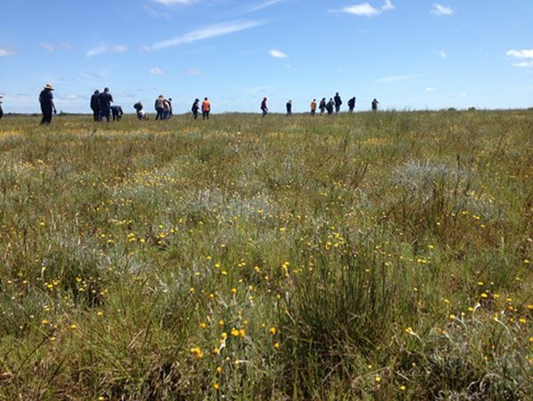 Linear Reserves Project Victoria