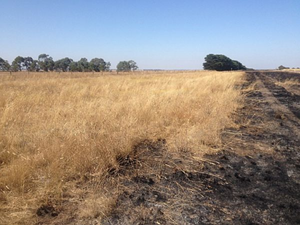 linear reserves project burning
