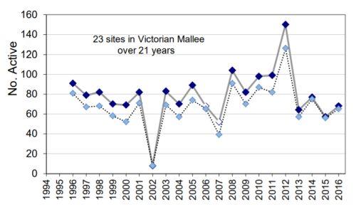 Malleefowl survey 2016