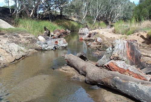 VPP habitat reinstatement glenelg river