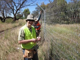 A 7 km long predator proof fence being constructed with help from Conservation Volunteers at Woodlands Historic Park