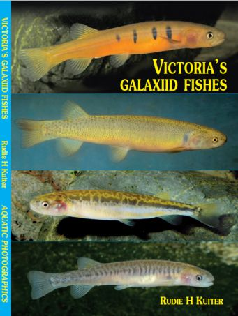 Victoria's Galaxiid Fishes book