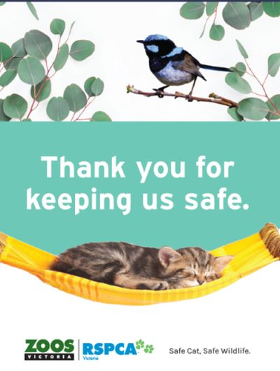 McLeod 3 safe cats safe wildlife poster Zoos Victoria