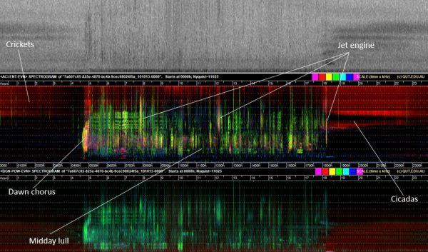 Watson 1 spectrogram in talk to SWIFFT 23 April 2020