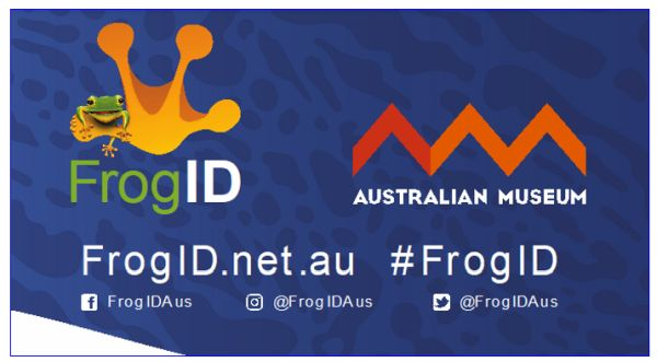 Frog ID 2