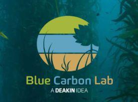 blue carbon lab