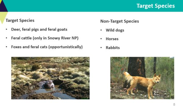 McMaster and Fahey target pest species -  in talk to SWIFFT 26 March 2020