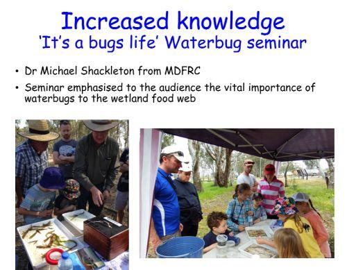 farnsworth bug workshop
